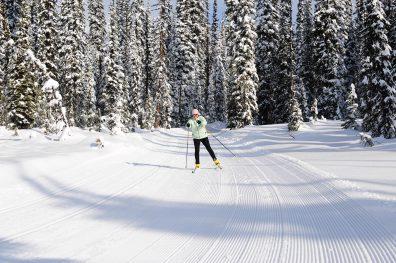 Snowshoe and Nordic Ski Boundary