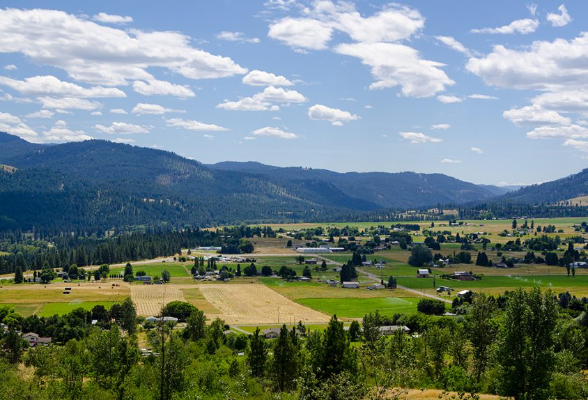 Valley view 12, near Grand Forks, summer, Boundary, landscape, Darren Robinson