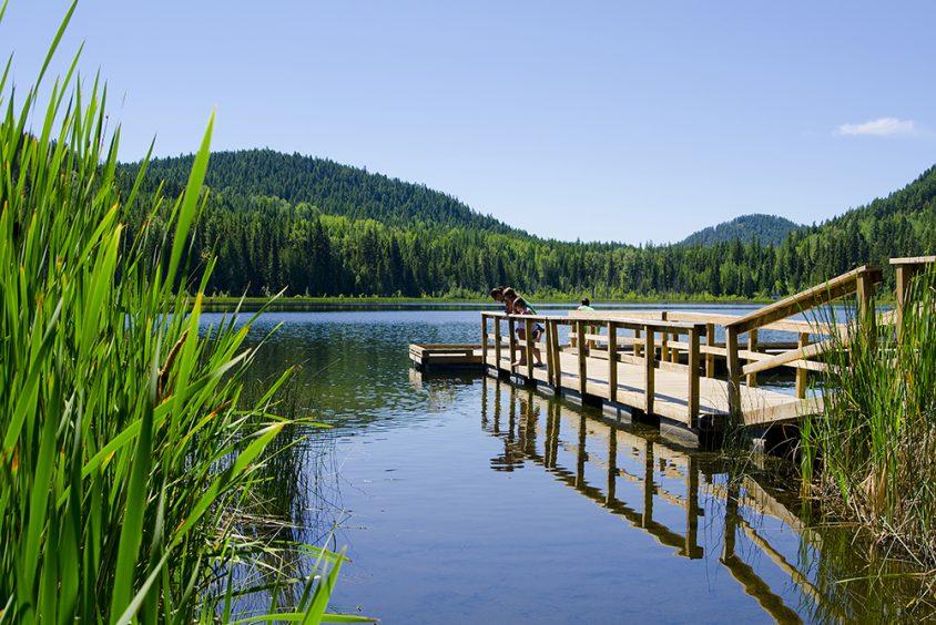 Wilgrass Lake, near Grand Forks, Boundary