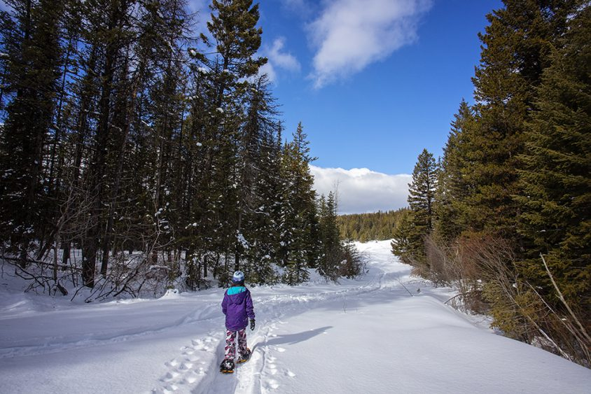 Snowshoeing Boundary