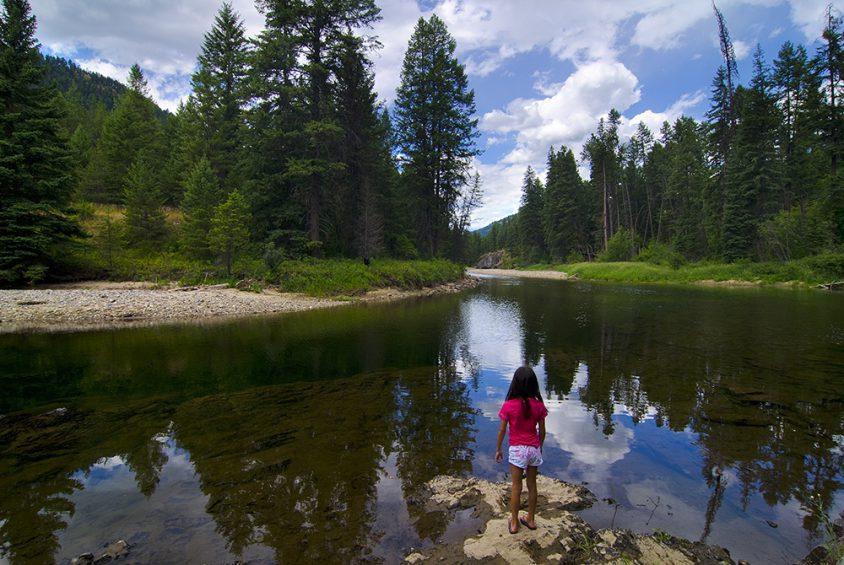 Kettle River, near Beaverdell, summer, Boundary