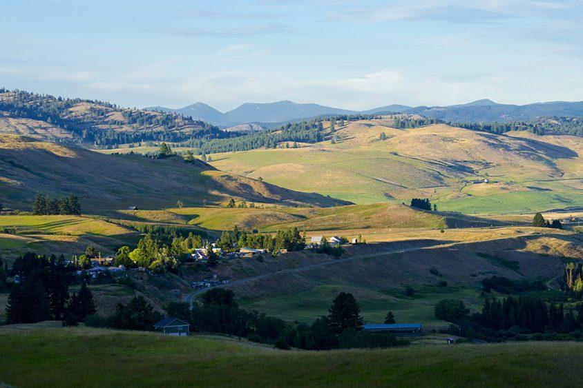 Bridesville panorama, green rolling hills