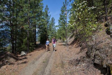 Hike the Great Trail